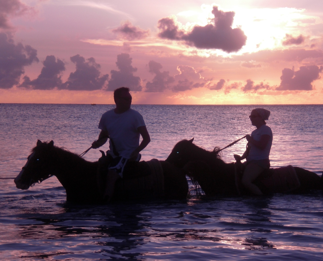 two horses swimming at sunset in the sea with riders
